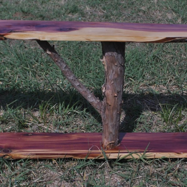 large cedar shelf with bark